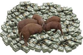 money pigs